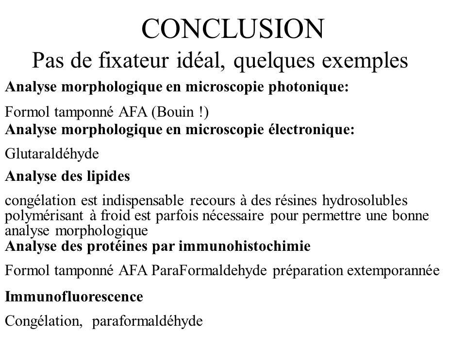 CONCLUSION Pas de fixateur idéal, quelques exemples