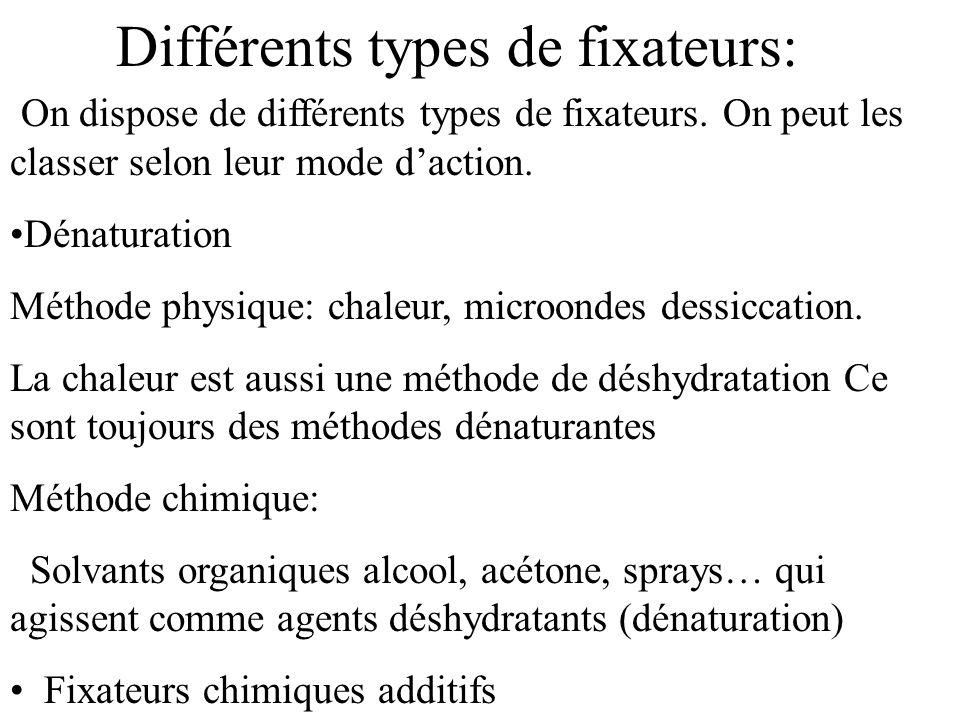 Différents types de fixateurs: