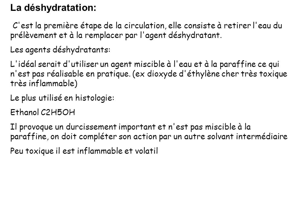 La déshydratation:
