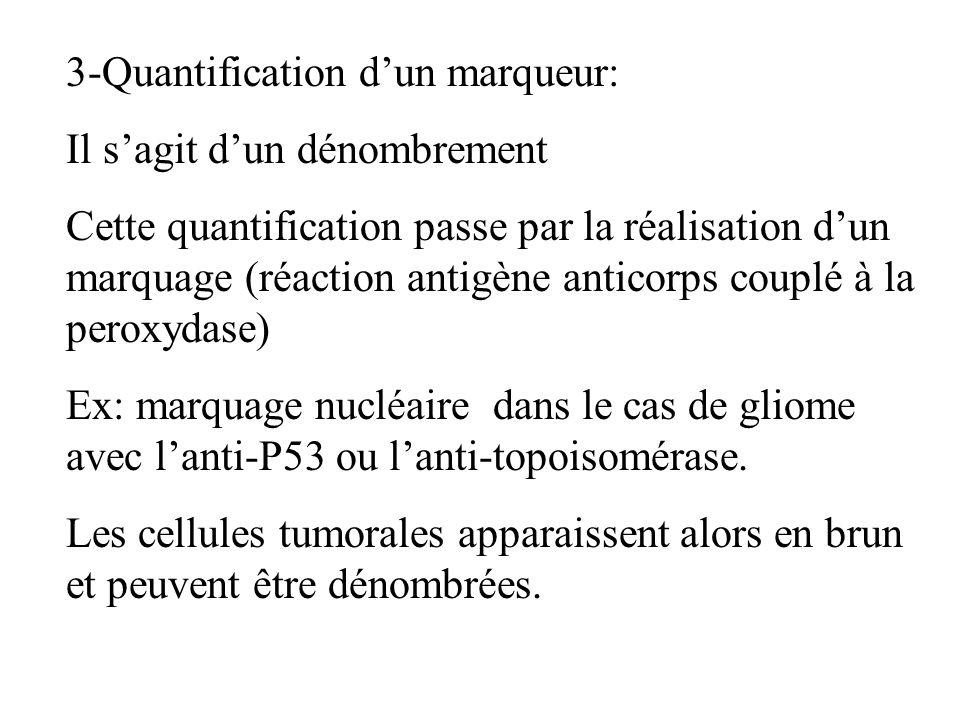 3-Quantification d'un marqueur: