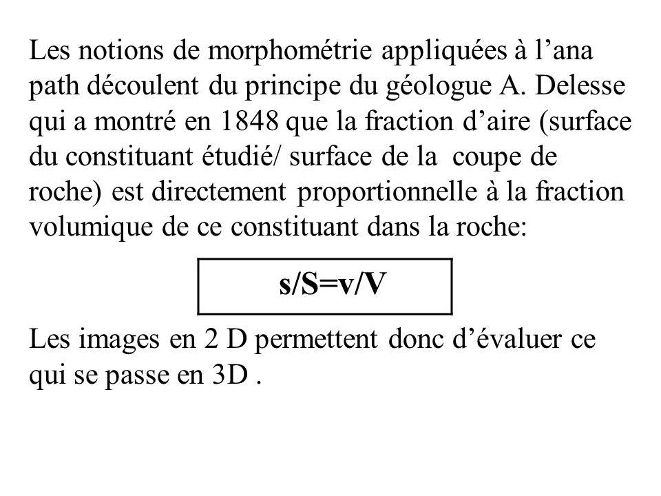 Les notions de morphométrie appliquées à l'ana path découlent du principe du géologue A. Delesse qui a montré en 1848 que la fraction d'aire (surface du constituant étudié/ surface de la coupe de roche) est directement proportionnelle à la fraction volumique de ce constituant dans la roche: