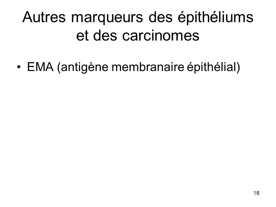 Autres marqueurs des épithéliums et des carcinomes