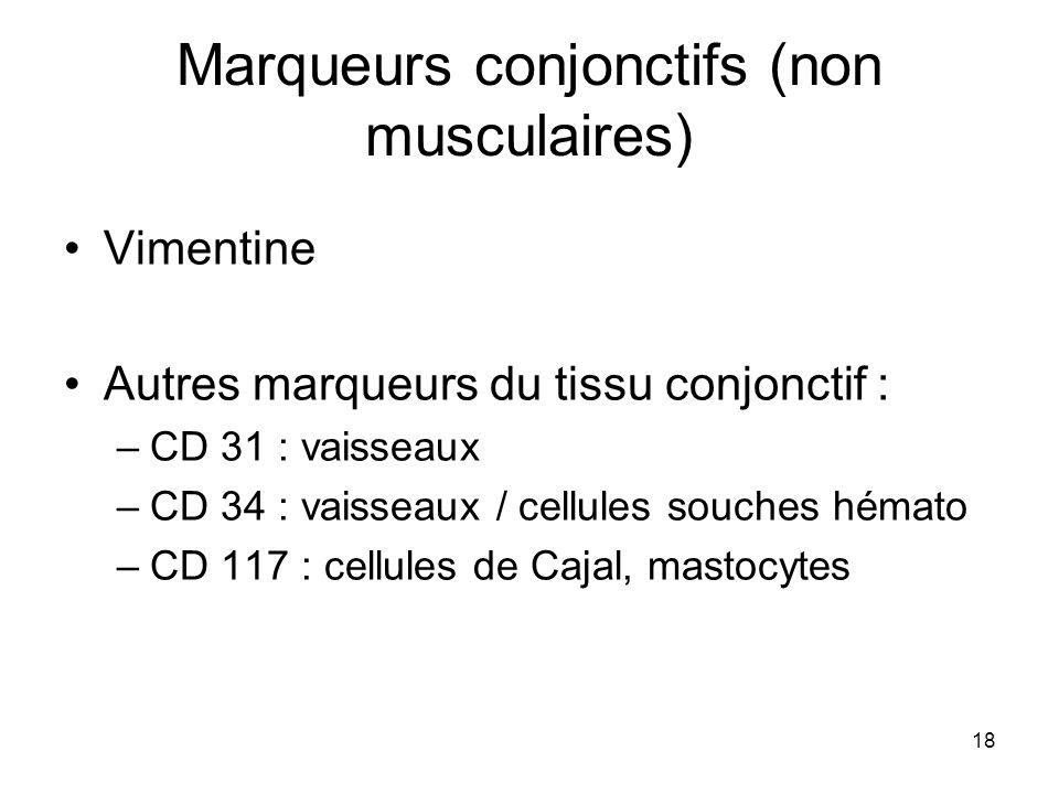 Marqueurs conjonctifs (non musculaires)