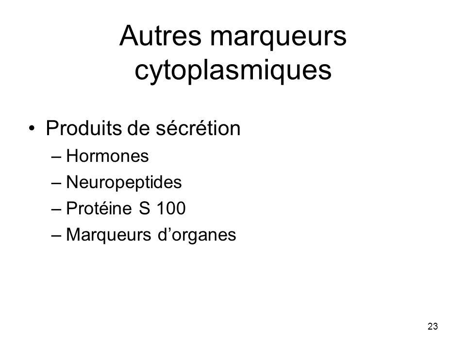 Autres marqueurs cytoplasmiques
