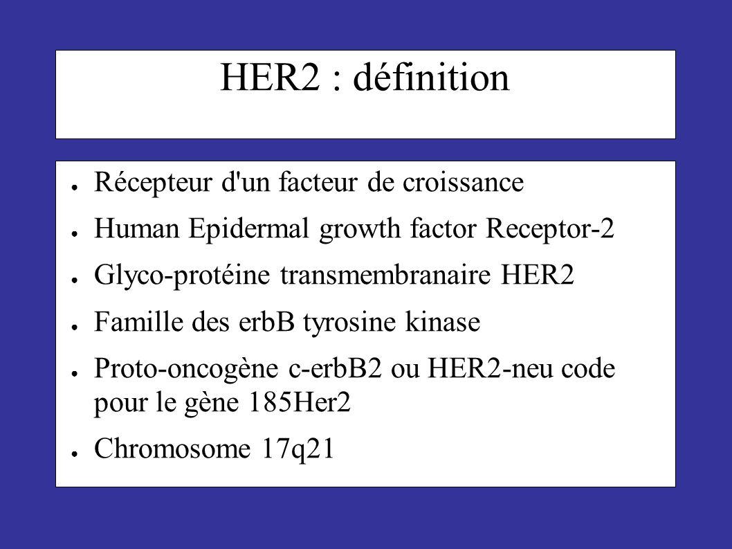 HER2 : définition Récepteur d un facteur de croissance
