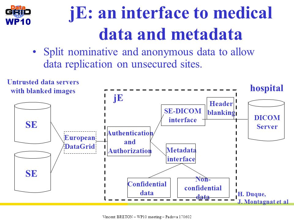 jE: an interface to medical data and metadata