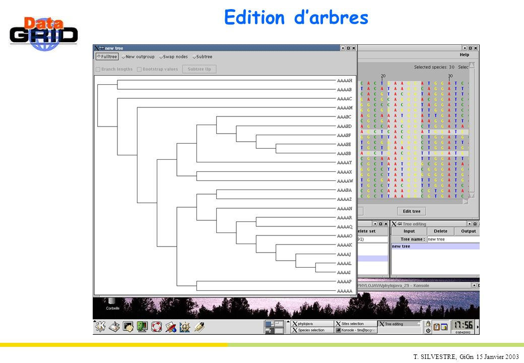Edition d'arbres