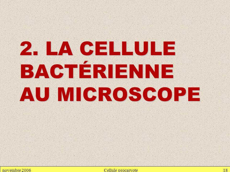 2. LA CELLULE BACTÉRIENNE AU MICROSCOPE