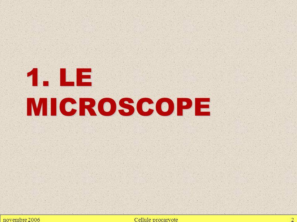 1. LE MICROSCOPE novembre 2006 Cellule procaryote