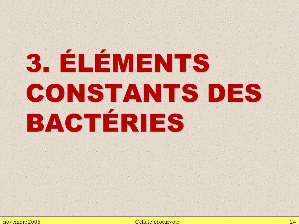 3. ÉLÉMENTS CONSTANTS DES BACTÉRIES