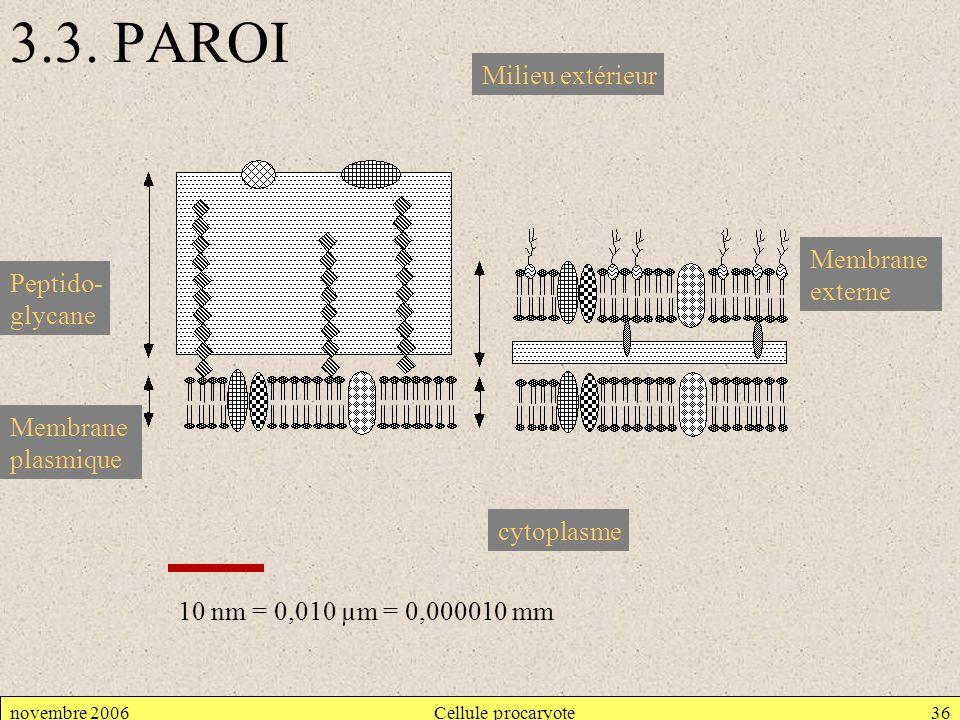 3.3. PAROI Milieu extérieur Membrane externe Peptido- glycane