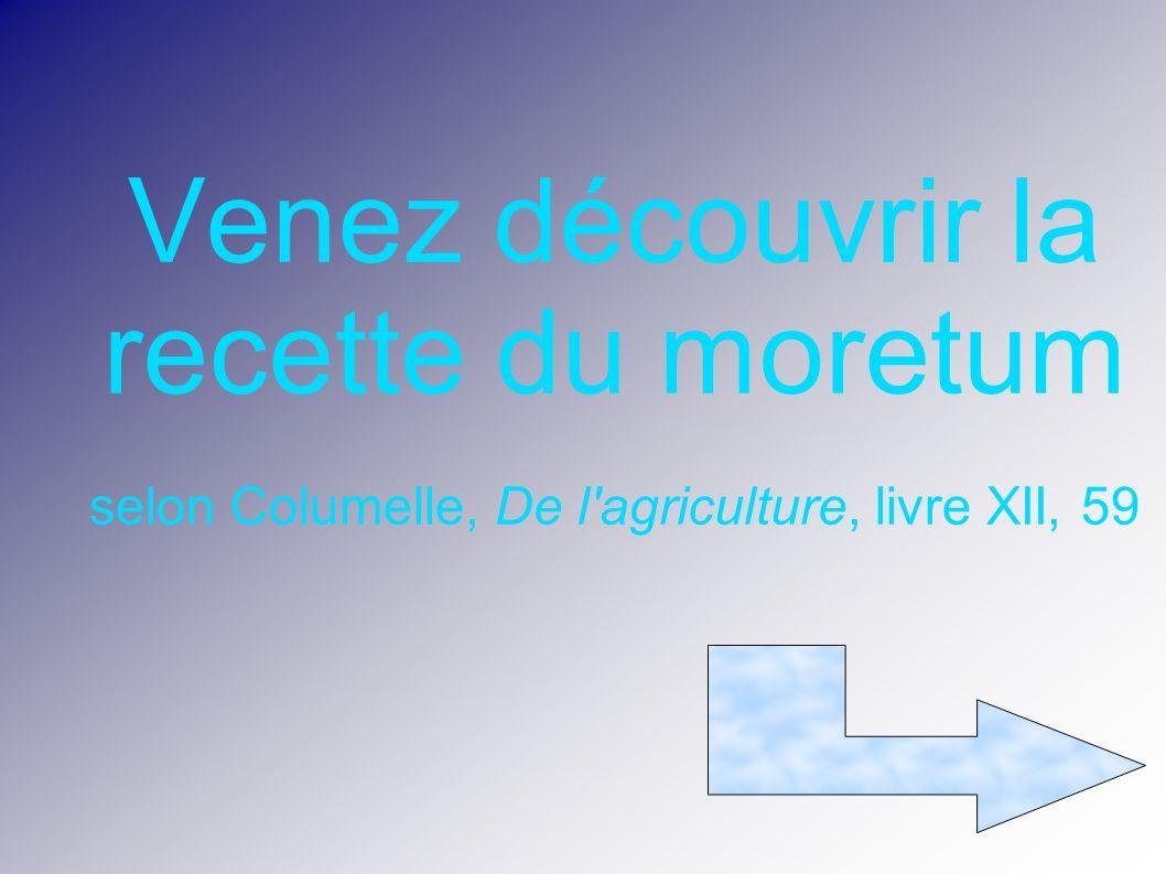 Venez découvrir la recette du moretum selon Columelle, De l agriculture, livre XII, 59