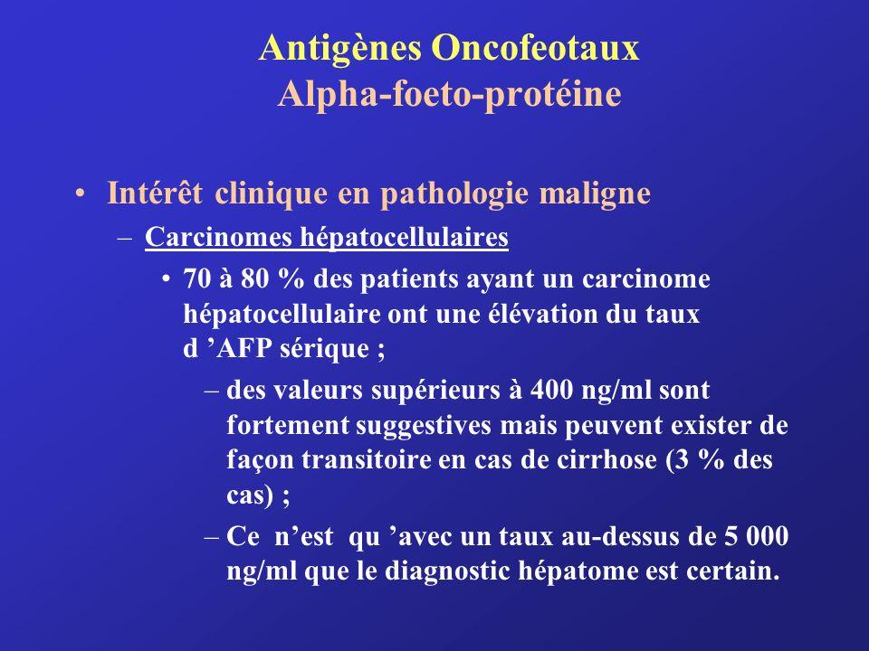 Antigènes Oncofeotaux Alpha-foeto-protéine