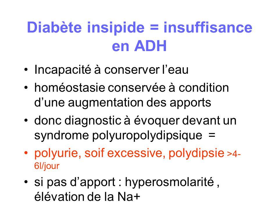 Diabète insipide = insuffisance en ADH