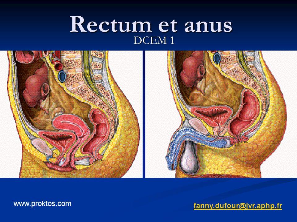 Rectum et anus DCEM 1 www.proktos.com fanny.dufour@jvr.aphp.fr