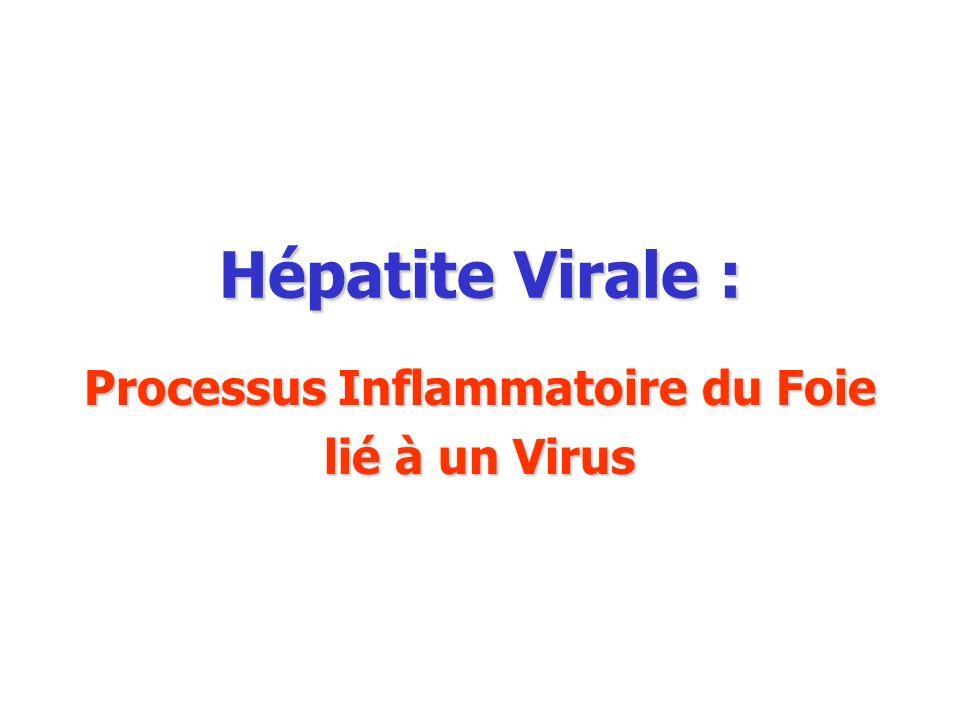 Processus Inflammatoire du Foie lié à un Virus
