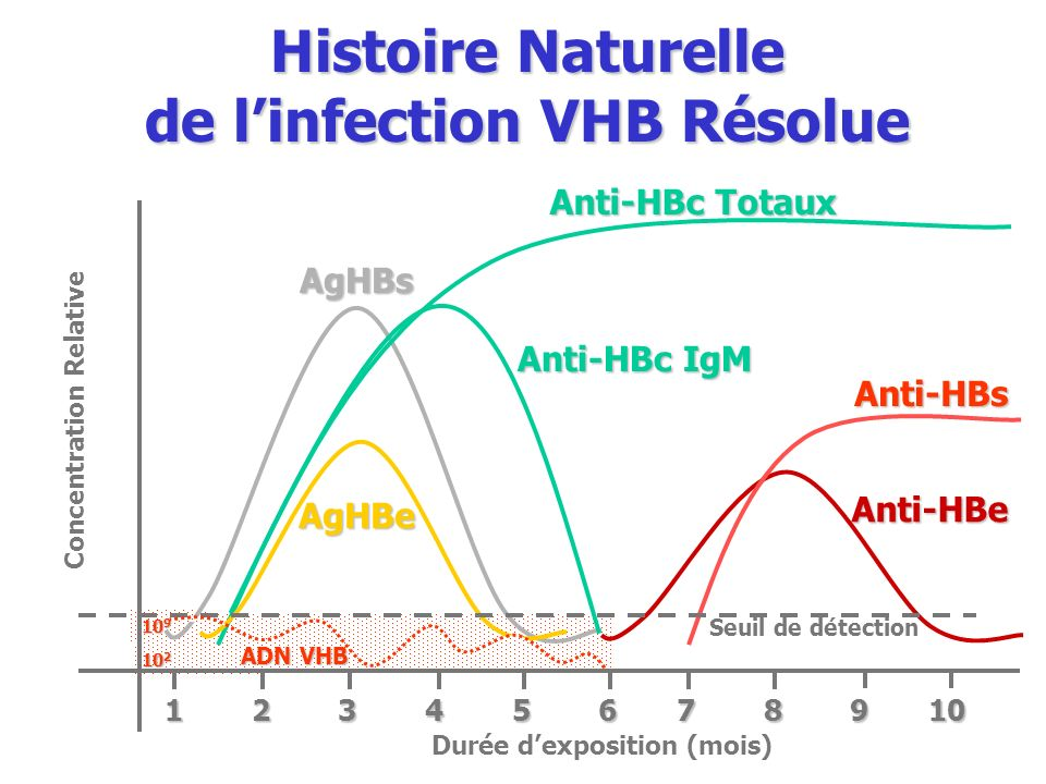 Histoire Naturelle de l'infection VHB Résolue