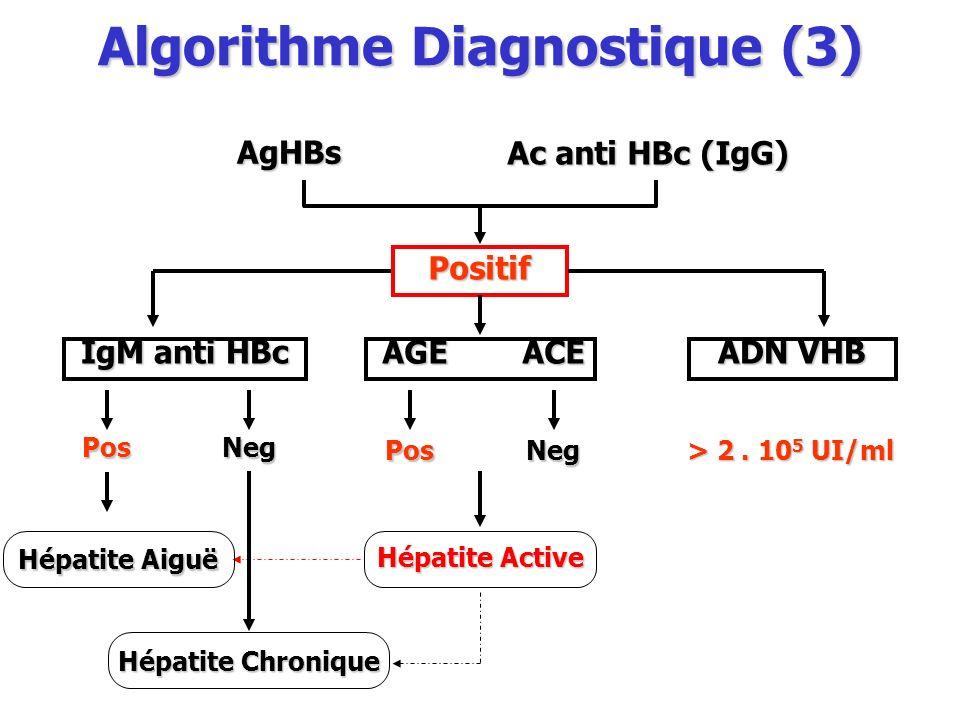Algorithme Diagnostique (3)