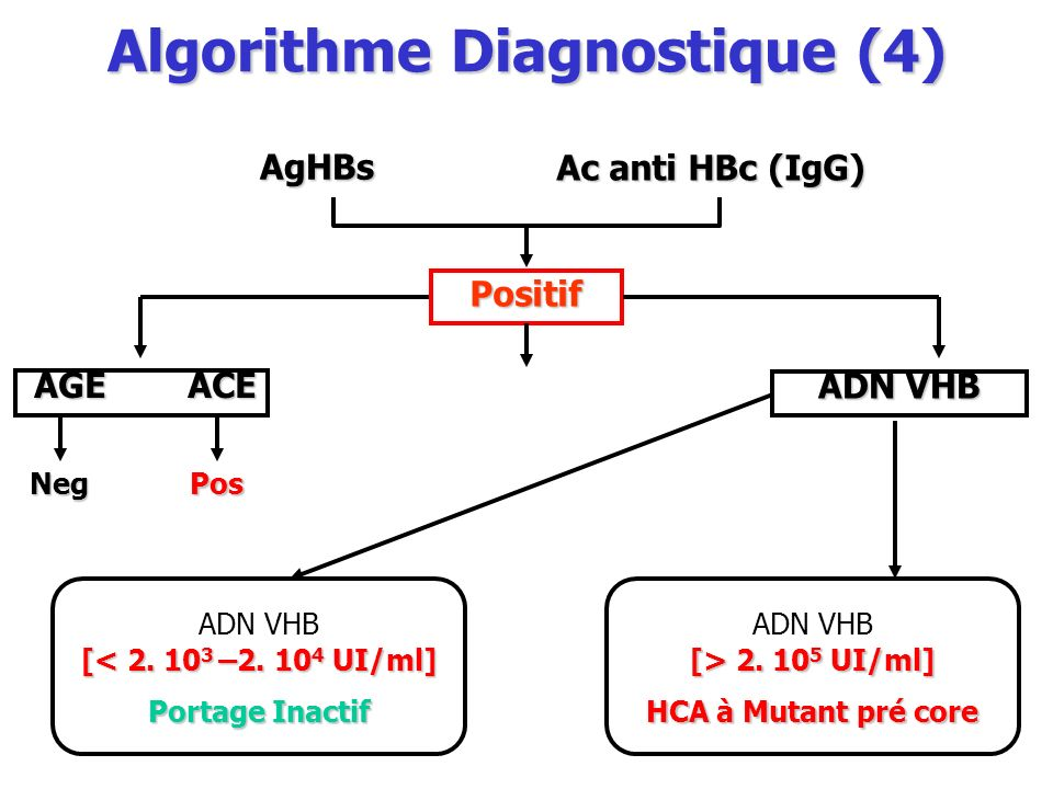 Algorithme Diagnostique (4)
