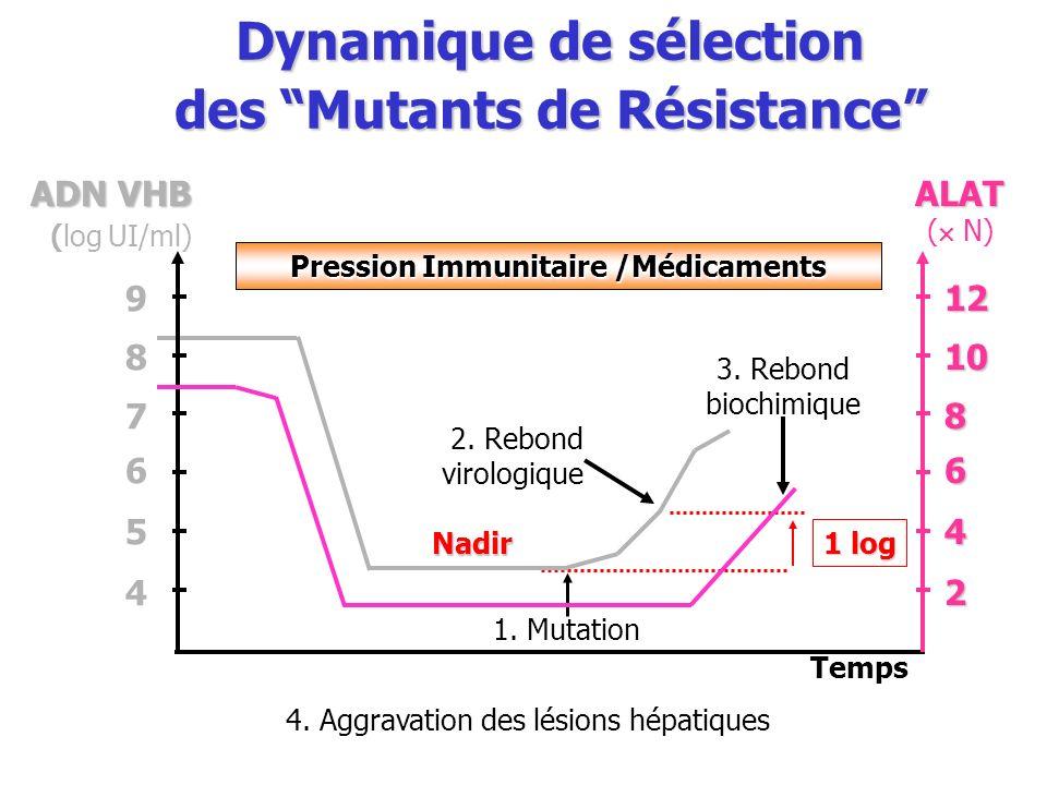 Dynamique de sélection des Mutants de Résistance