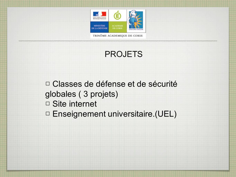 PROJETS □ Classes de défense et de sécurité globales ( 3 projets) □ Site internet. □ Enseignement universitaire.(UEL)