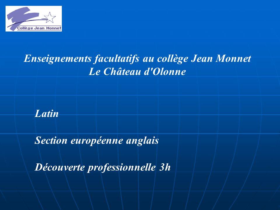 Enseignements facultatifs au collège Jean Monnet