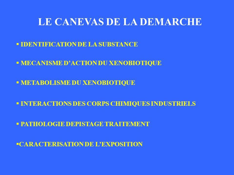 LE CANEVAS DE LA DEMARCHE