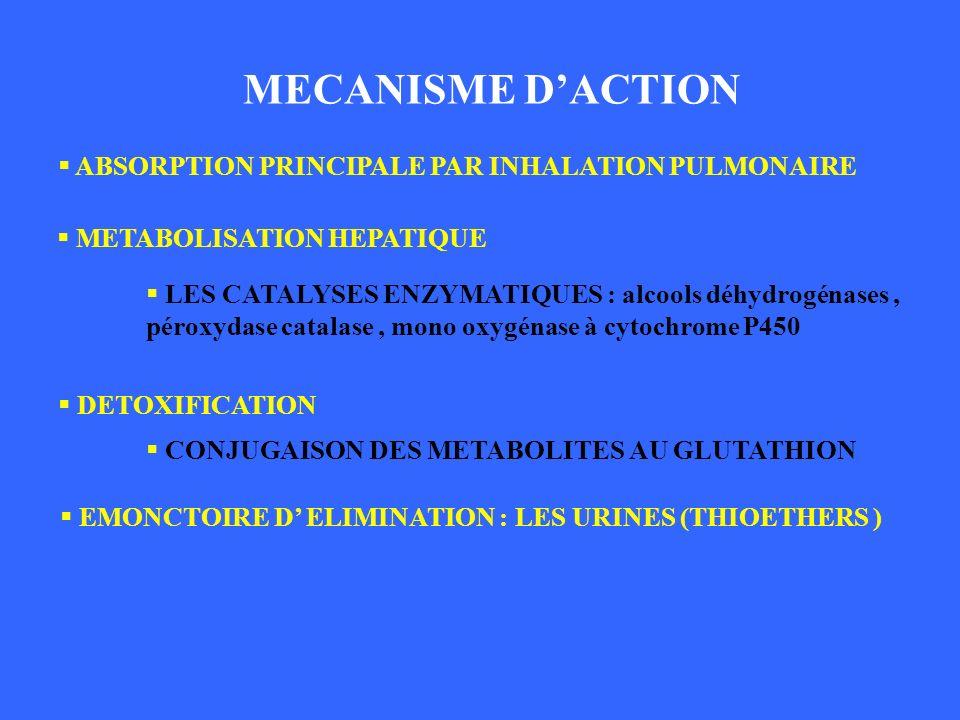 MECANISME D'ACTION MECANISME D'ACTION