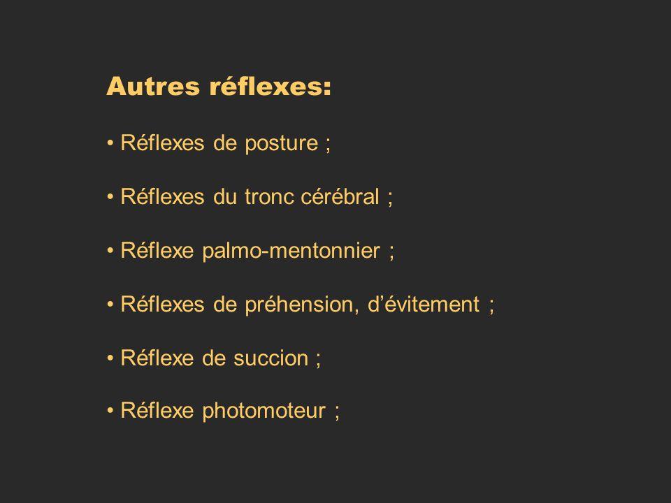 Autres réflexes: Réflexes de posture ; Réflexes du tronc cérébral ;