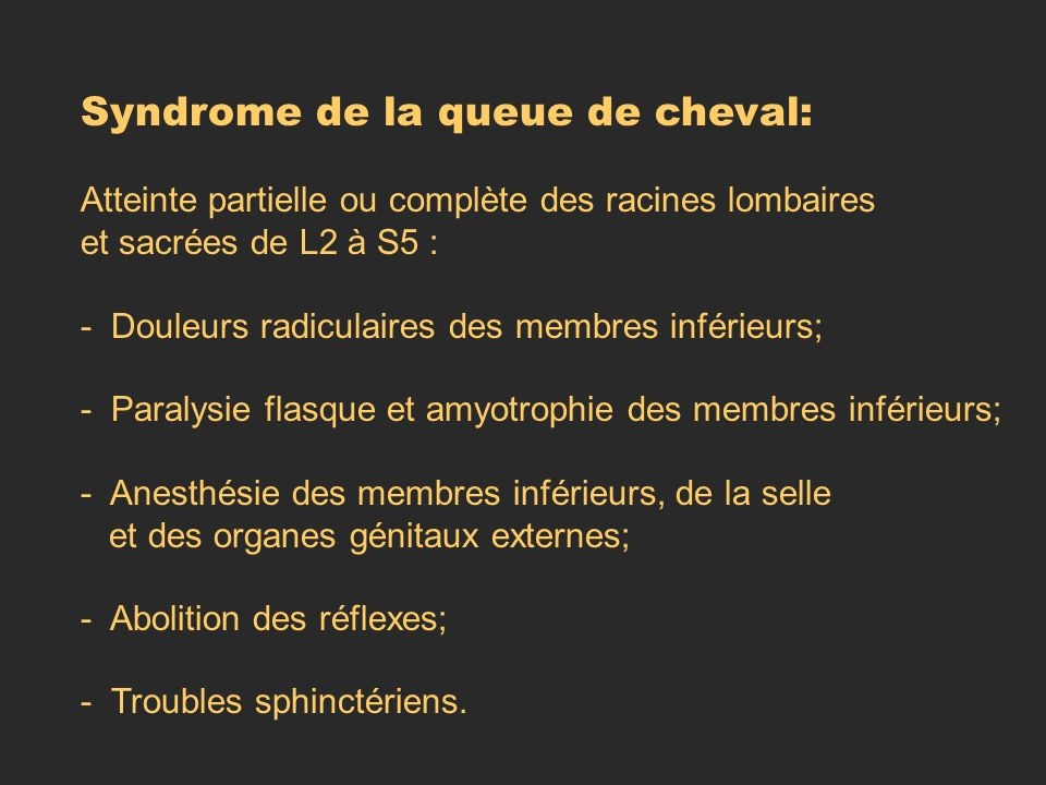 Syndrome de la queue de cheval: