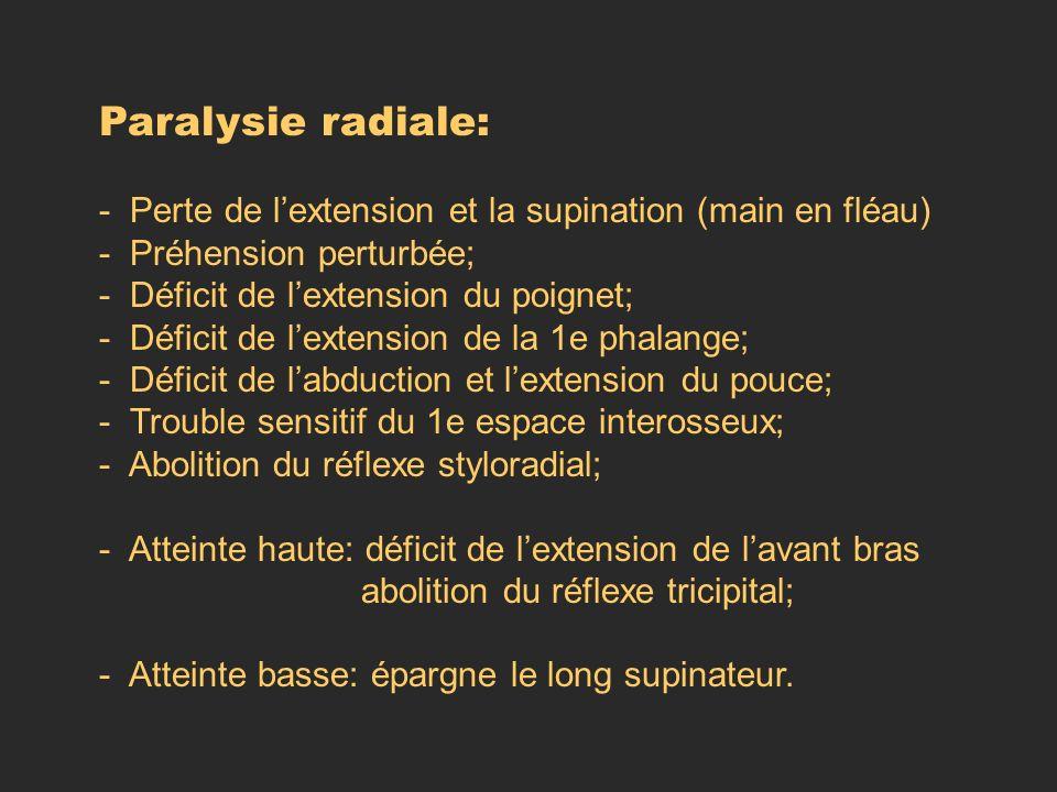 Paralysie radiale: - Perte de l'extension et la supination (main en fléau) - Préhension perturbée;