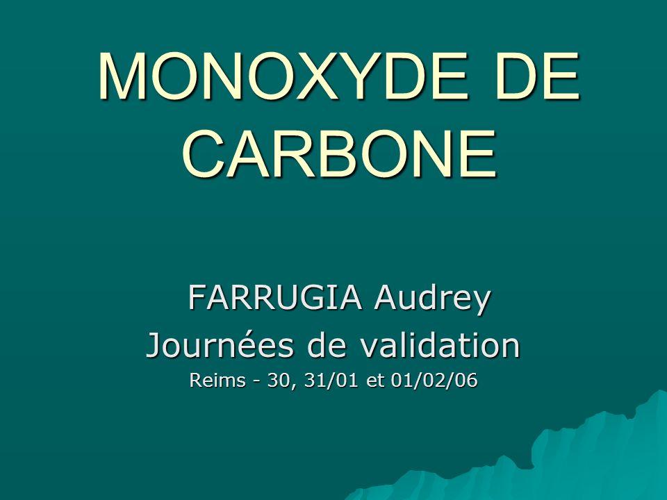 FARRUGIA Audrey Journées de validation Reims - 30, 31/01 et 01/02/06