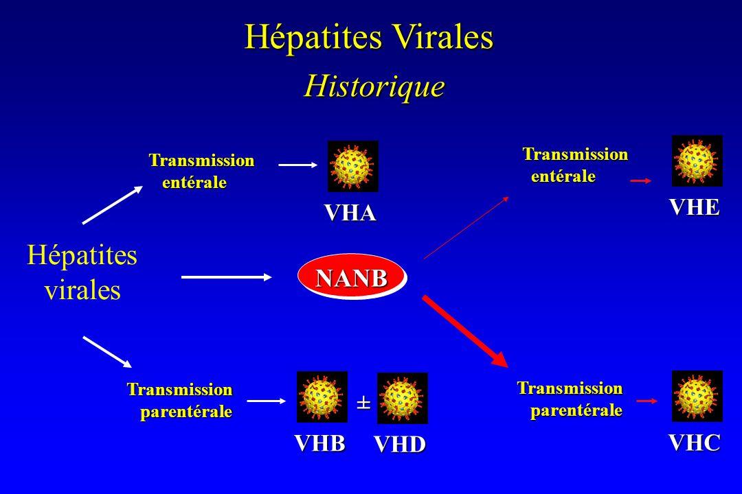 Historique Hépatites Virales Hépatites virales NANB VHE VHA ± VHB VHD