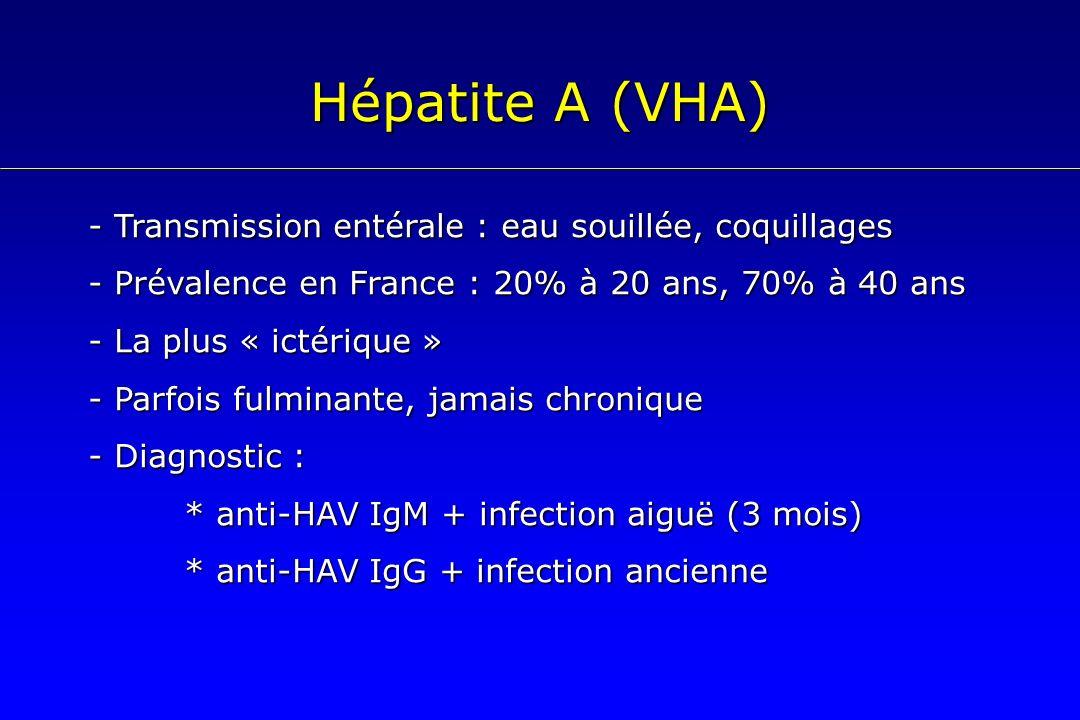 Hépatite A (VHA) - Transmission entérale : eau souillée, coquillages