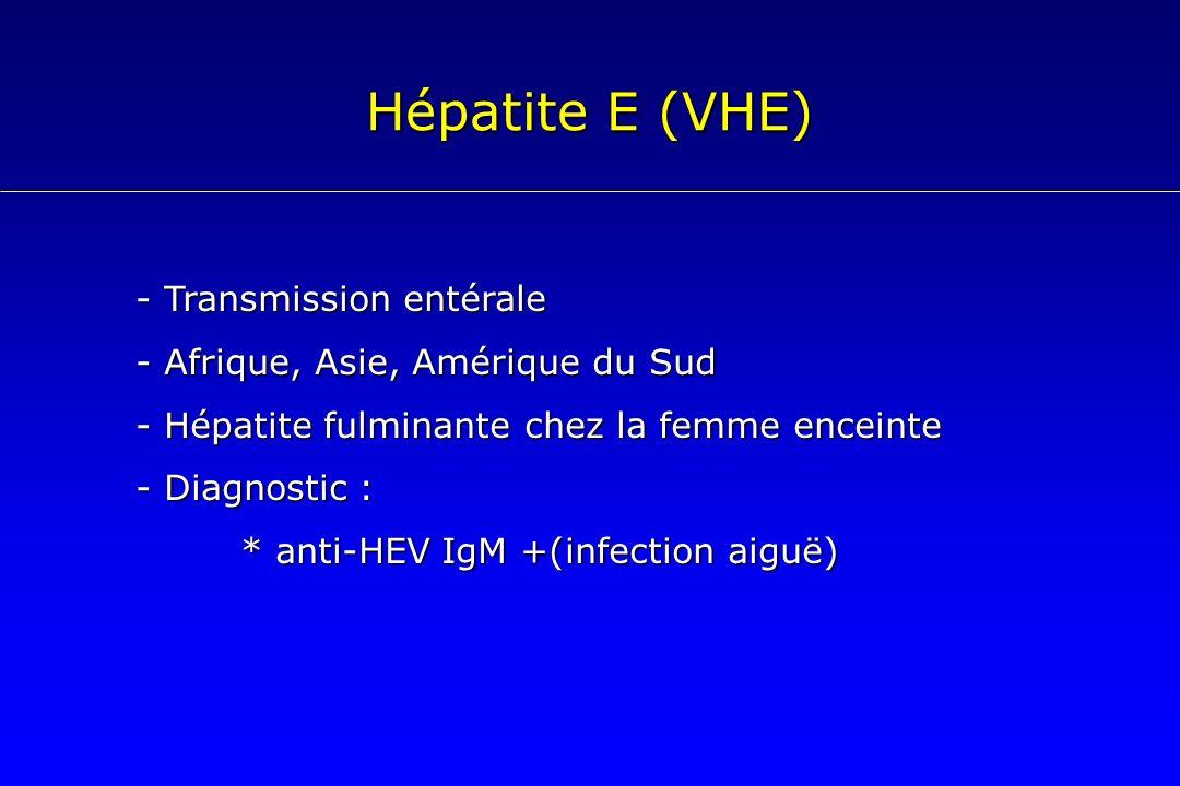 Hépatite E (VHE) - Transmission entérale