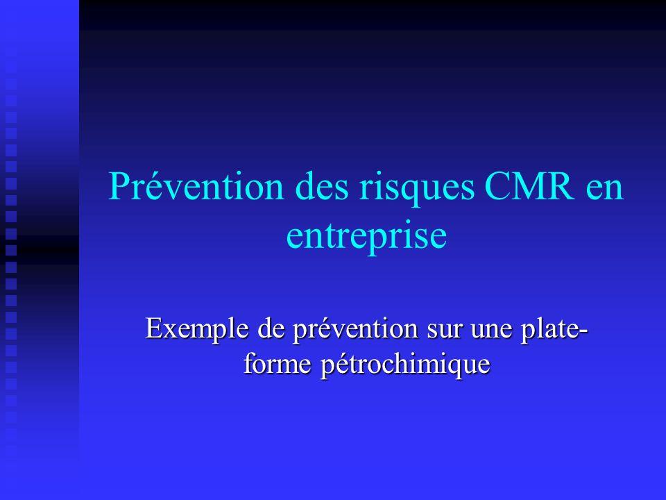 Prévention des risques CMR en entreprise