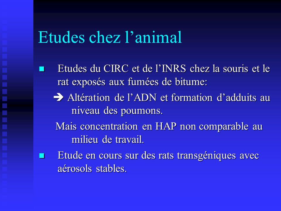 Etudes chez l'animal Etudes du CIRC et de l'INRS chez la souris et le rat exposés aux fumées de bitume:
