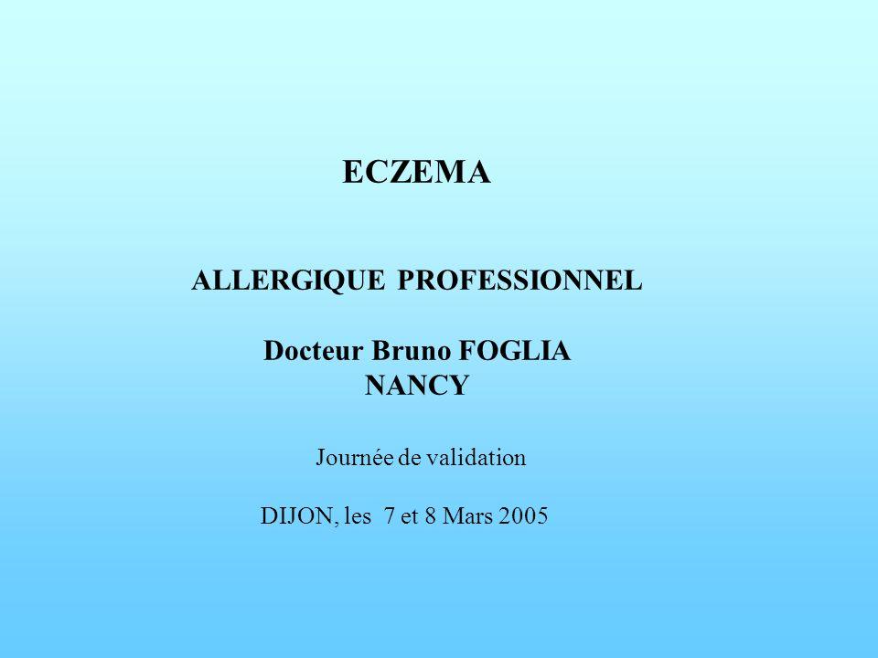 ECZEMA ALLERGIQUE PROFESSIONNEL Docteur Bruno FOGLIA NANCY Journée de validation DIJON, les 7 et 8 Mars 2005