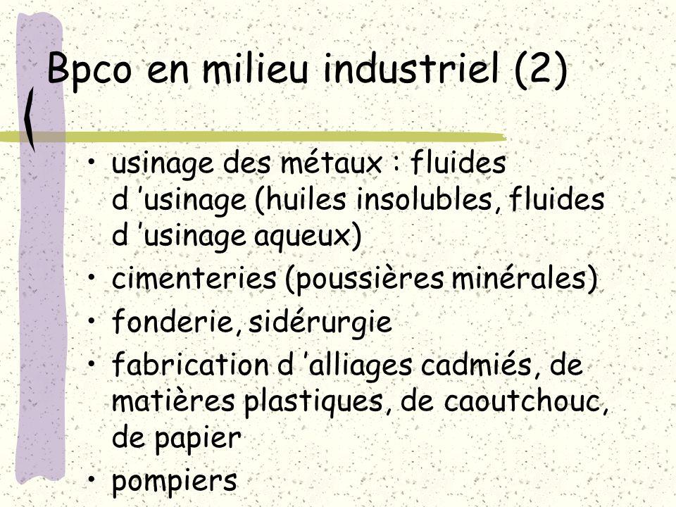 Bpco en milieu industriel (2)