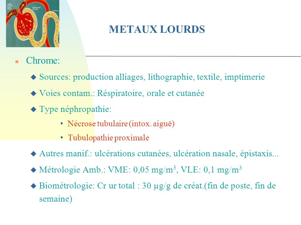 11/02/07 METAUX LOURDS. Chrome: Sources: production alliages, lithographie, textile, imptimerie. Voies contam.: Réspiratoire, orale et cutanée.
