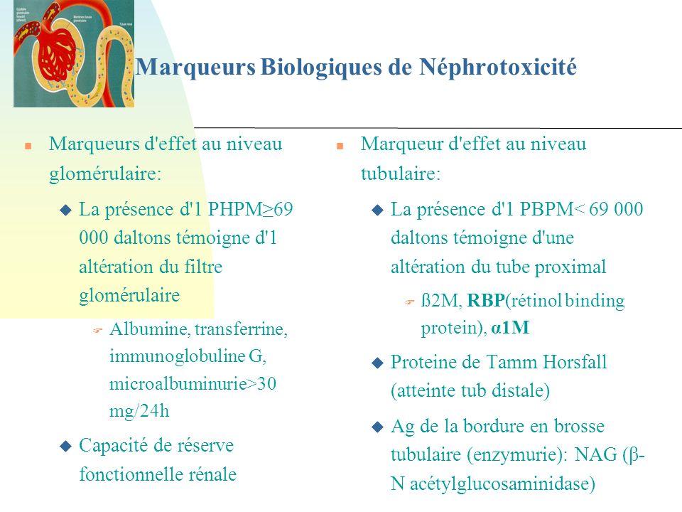 Marqueurs Biologiques de Néphrotoxicité