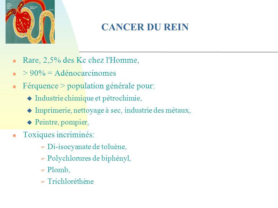 CANCER DU REIN Rare, 2,5% des Kc chez l Homme,
