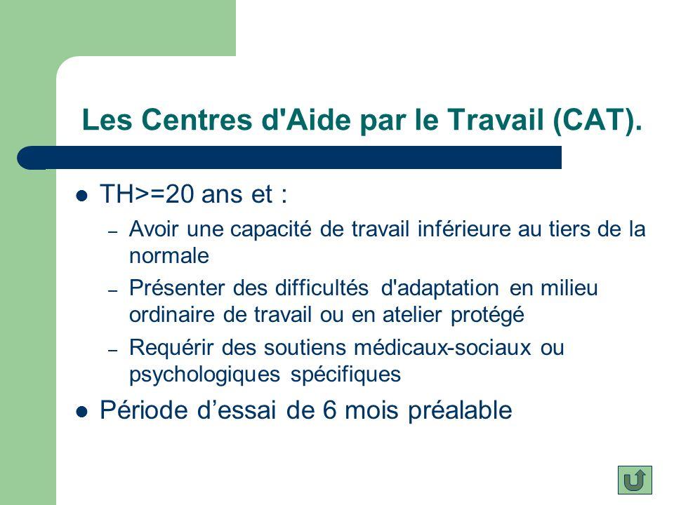Les Centres d Aide par le Travail (CAT).