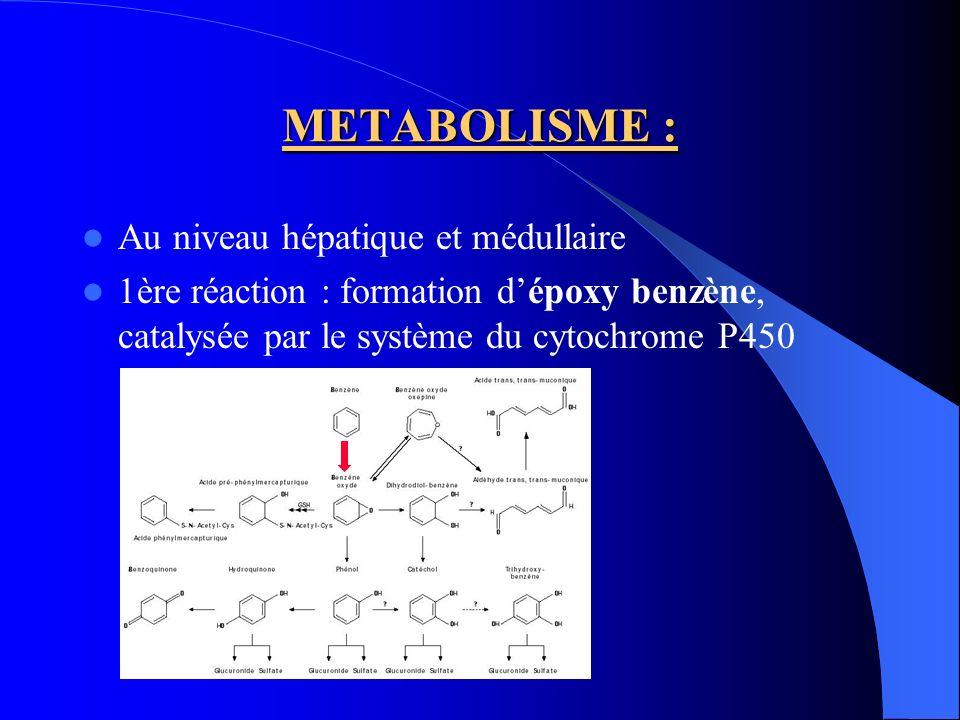 METABOLISME : Au niveau hépatique et médullaire
