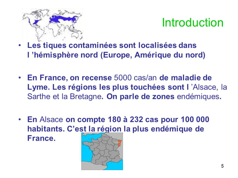 Introduction Les tiques contaminées sont localisées dans l 'hémisphère nord (Europe, Amérique du nord)
