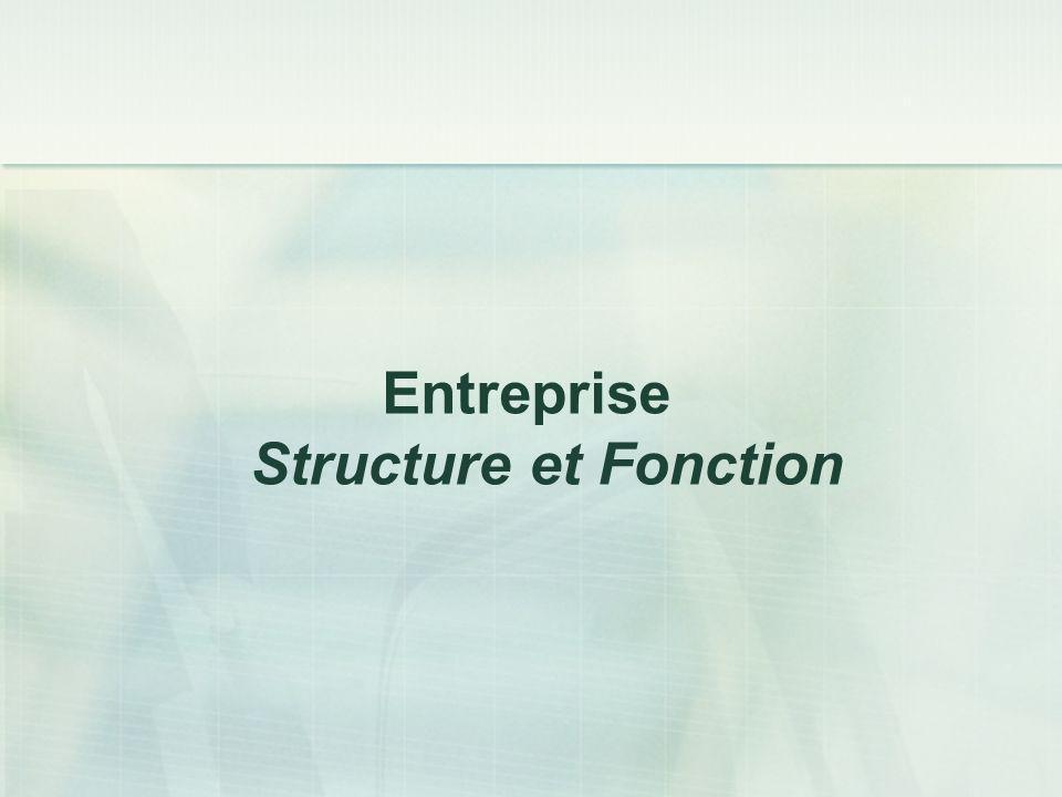 Entreprise Structure et Fonction