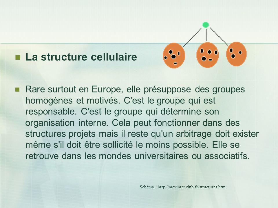La structure cellulaire