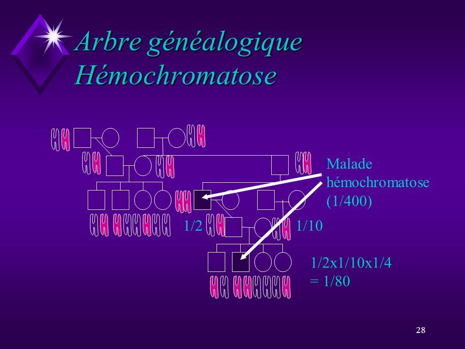 Arbre généalogique Hémochromatose