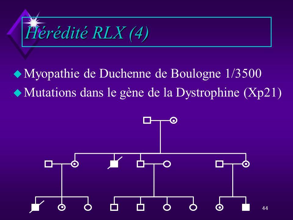 Hérédité RLX (4) Myopathie de Duchenne de Boulogne 1/3500