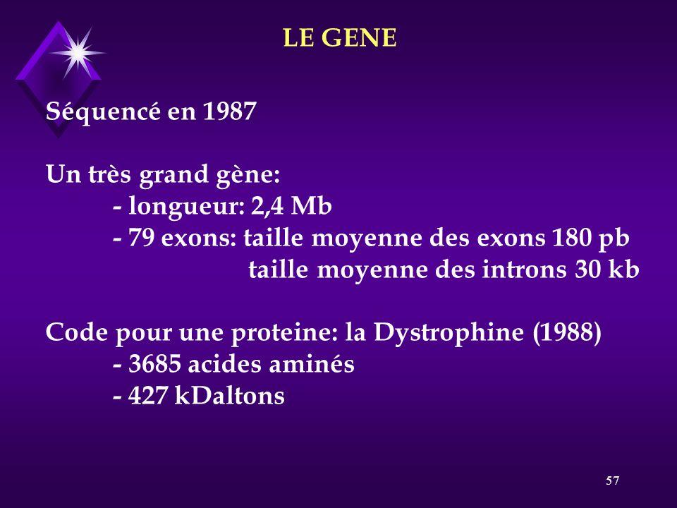 LE GENE Séquencé en 1987. Un très grand gène: - longueur: 2,4 Mb. - 79 exons: taille moyenne des exons 180 pb.